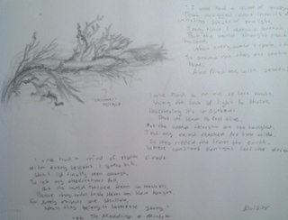 a small drawing, with accompanying poem.